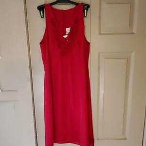 Nwt Ann Taylor Loft dress